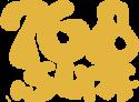 logo-giallo-windsurf-768-surf-vieste